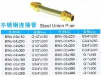 Stainless Steel Union Pipe
