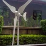 Wind Turbine System 50W