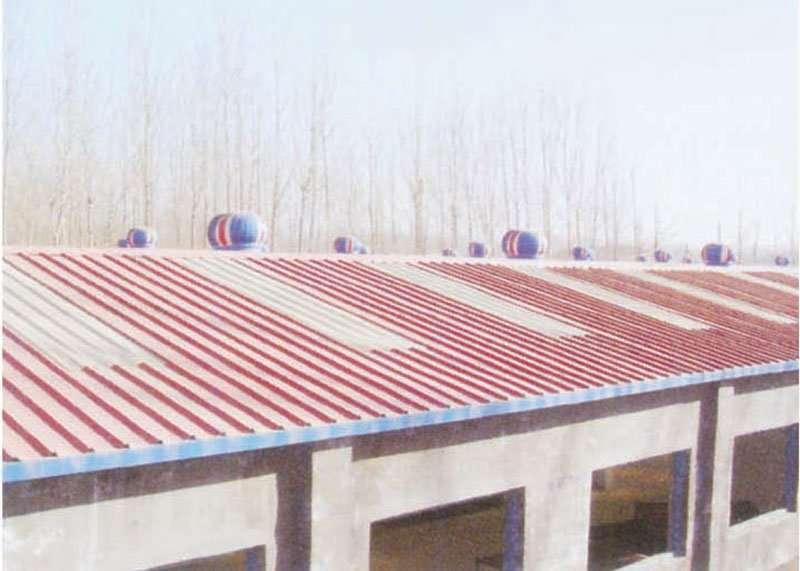 Roof-Ventilator6