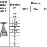 flanged globe valve 150lb