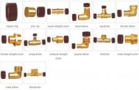 PEX Pipe Fittings
