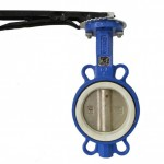 Flange Type Manual Butterfly Valve