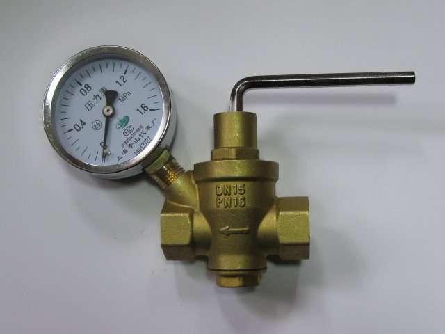 Water Pressure Relief Valv4