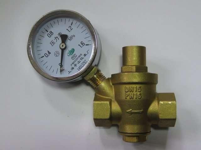 Water Pressure Relief Valv5