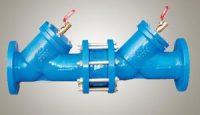 double non-return valve
