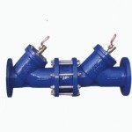 double-non-return-valve