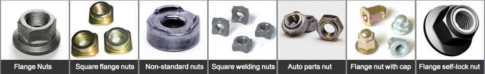 Custom cold forged nuts cold heading metal nuts