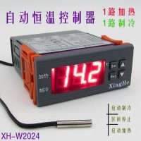 Microcomputer dual output automatic temperature control instrument XH-W2024