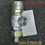 A21H A21W A21Y Screw-in type Spring loaded micro-opening safety valve