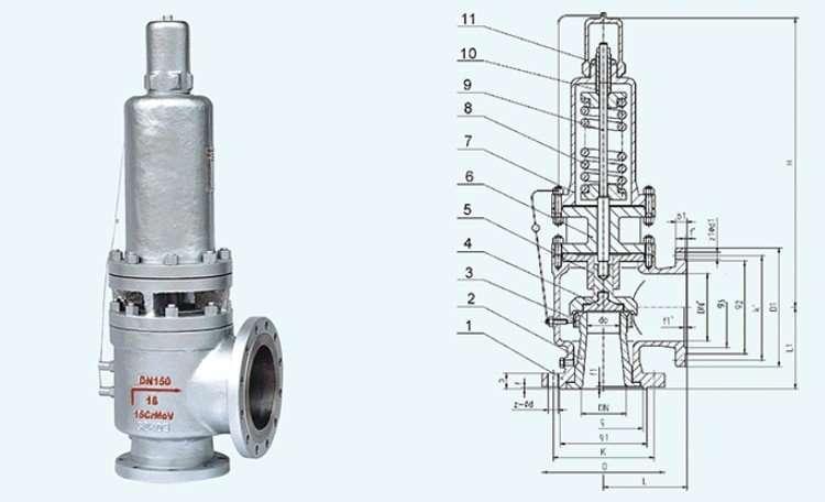 Spring loaded safety valve 1