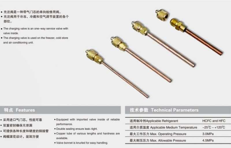 Charging needle valve